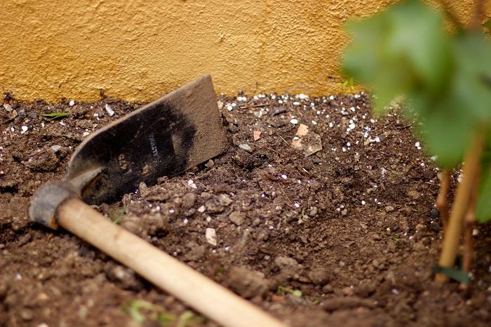 Hnojenie a obrábanie pôdy