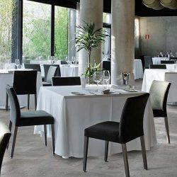 Podnikatelský záměr restaurace na úrovni